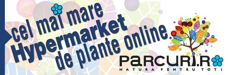 Promovare hipermarket de plante